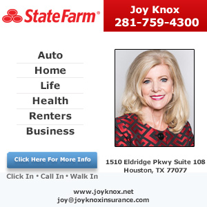 Joy Knox - State Farm Insurance Agent Listing Image